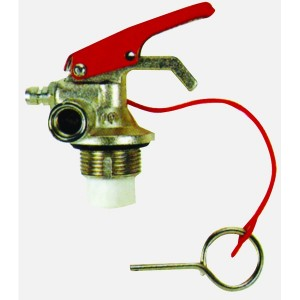 Europe style for Stainless Steel Fire Extinguisher Cylinder -